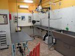 Ali Bau Bau - Laboratorio